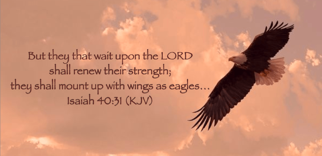 Eagle with Isaiah verse