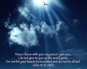 photo_peace_300
